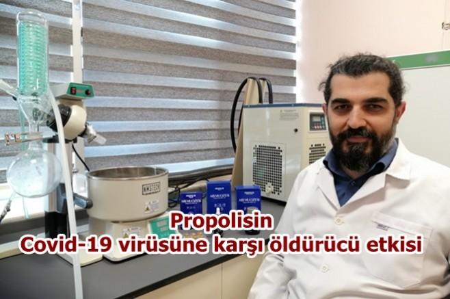 Arı Mucizesi Propolisin Covid-19 virüsünü öldürücü özelliği bulunmakta