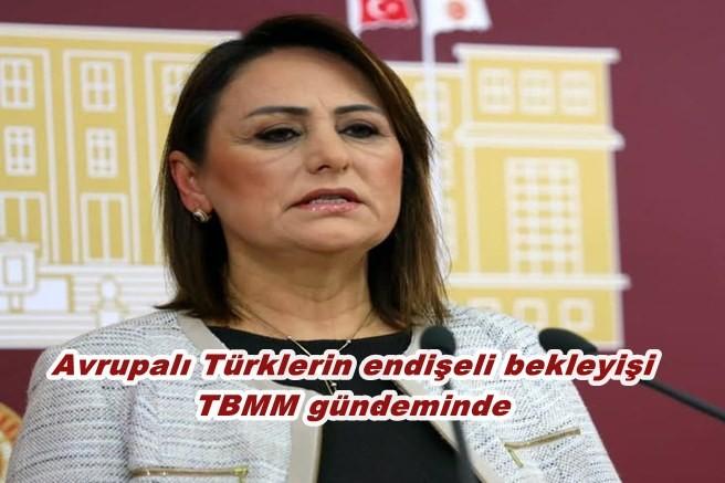 Avrupalı Türklerin endişeli bekleyişi TBMM gündeminde