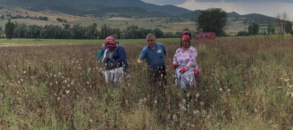 CHP'li Ramis Topal: Çiftçimizin derdi dünyaları aşmış