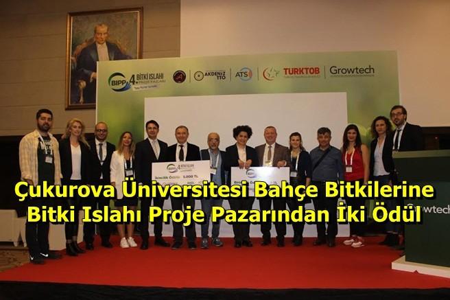 Çukurova Üniversitesi Bahçe Bitkilerine Bitki Islahı Proje Pazarından İki Ödül