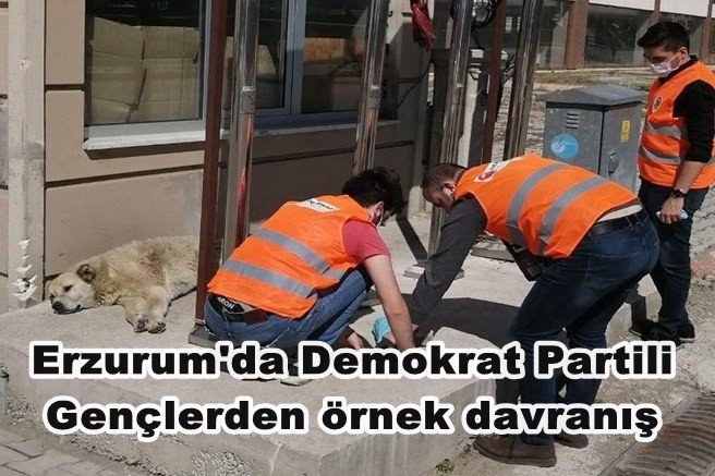 Erzurum'da Demokrat Partili Gençlerden örnek davranış