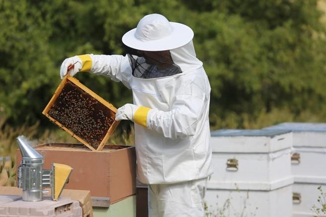 Kovandan Sofraya Arıcılık ve Arı Ürünleri Sempozyumu Bugün Gerçekleşiyor