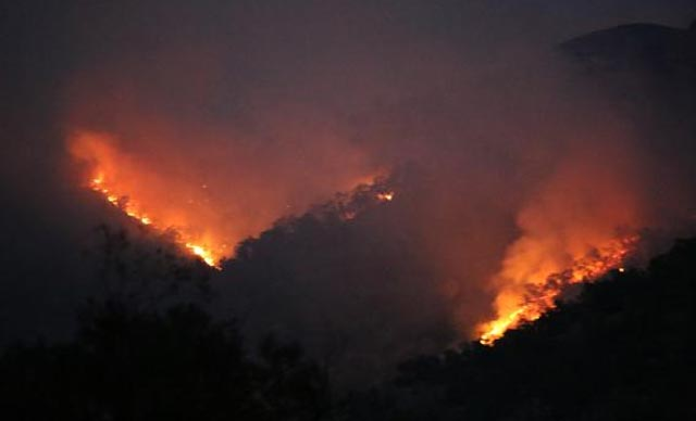 Munzur Vadisi Milli Park'taki yangına müdahale sürüyor