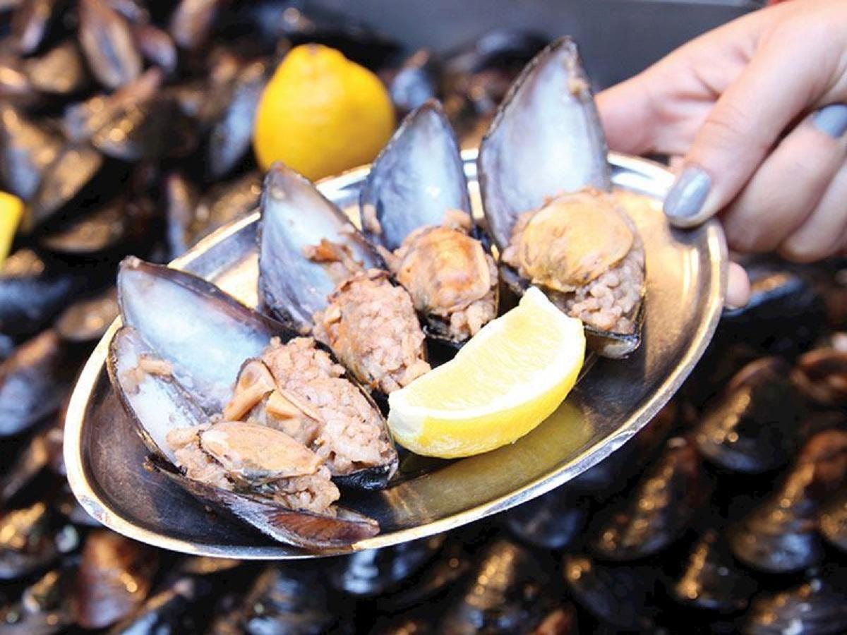 Müsilaj tereddütü: Denize girilebilir mi? Balık ve midye tüketilmeli mi?